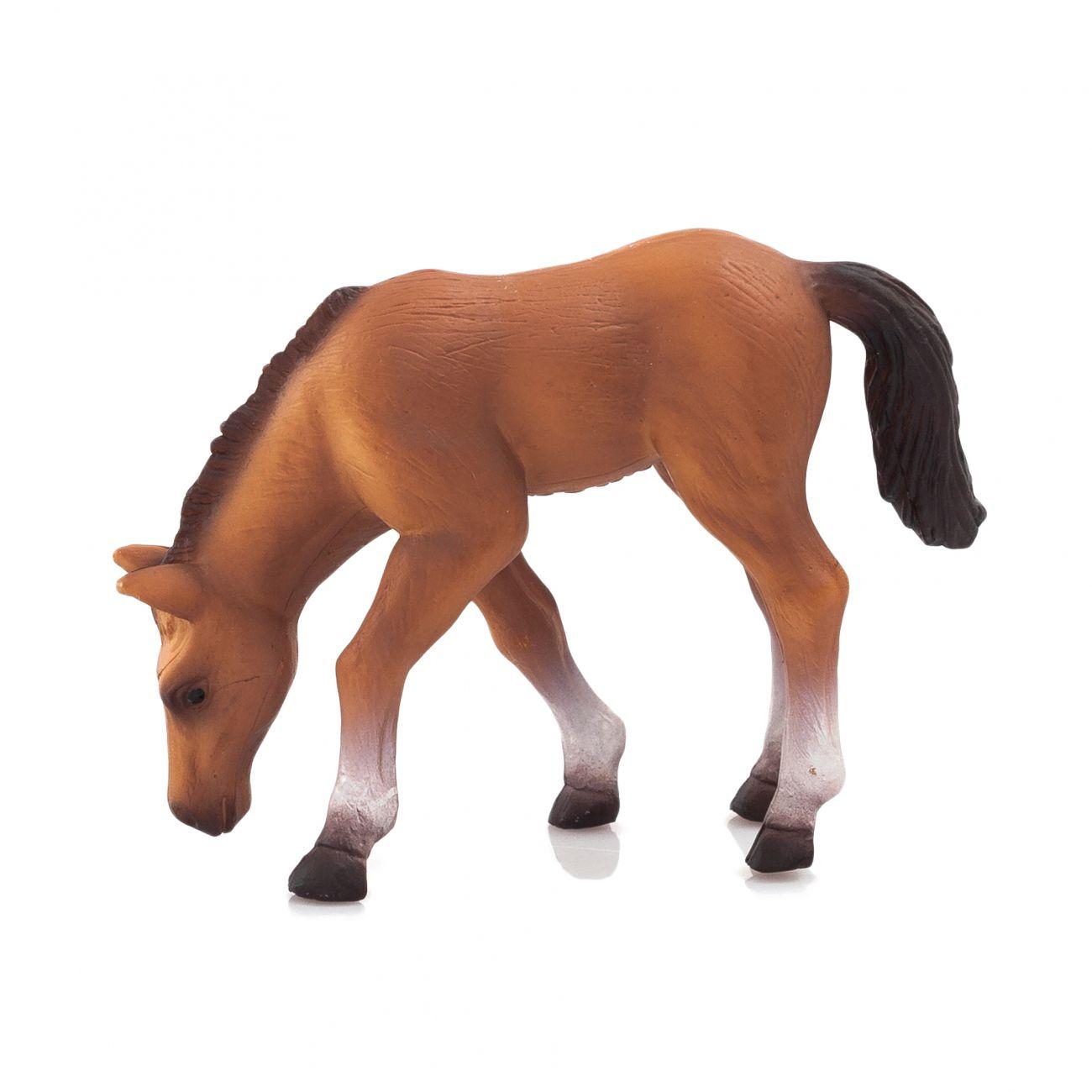 Arabski žrebec